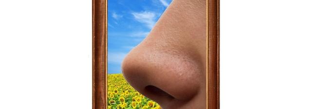 Odori e molestie olfattive